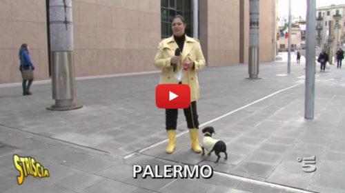 Striscia, Allarme sicurezza al tribunale di Palermo: Ecco come i detenuti…  VIDEO