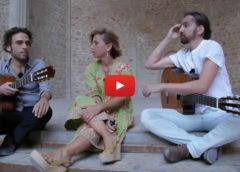 La città di Palermo raccontata in tutte le sue sfumature nello speciale documentario Rai |VIDEO
