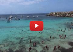 Tour Sicilia Occidentale: Palermo, Cefalù, Favignana, Erice e Scopello |VIDEO