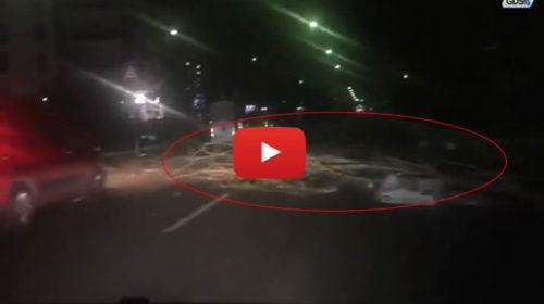 Palermo, via Oreto flagellata dal forte vento: slalom tra alberi e cartelloni divelti 🌀 IL VIDEO 🎥