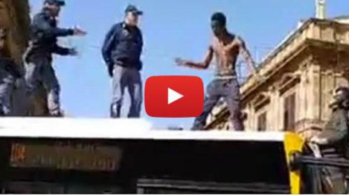 Palermo, follia sul bus: sale sul tetto e viene fermato dopo una lunga trattativa 🎥 VIDEO