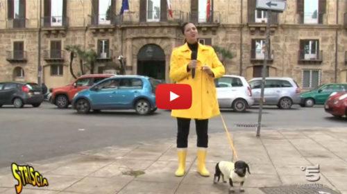 Striscia la Notizia – Regione Sicilia, danno erariale non recuperato 🎥 VIDEO