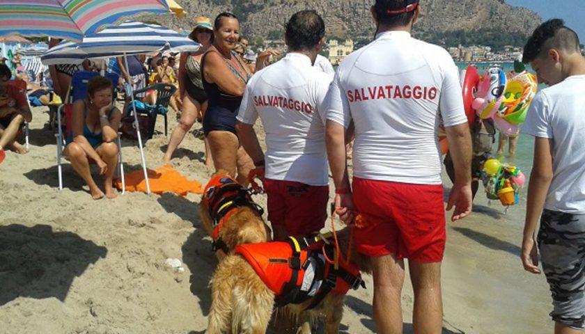 Forte vento a Mondello, donna in difficoltà salvata dai cani baywatch