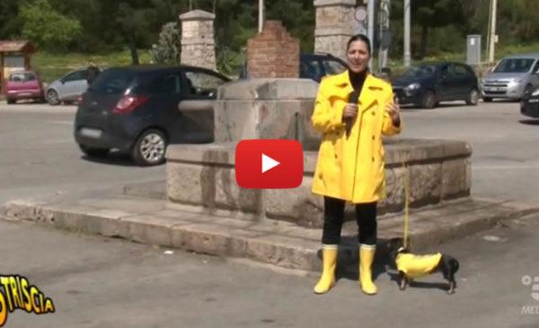 Striscia, Ecco gli aggiornamenti di Stefania Petyx sulla crisi idrica siciliana 📺 VIDEO 🎥