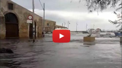 VIDEO SHOCK: Marzamemi come Venezia, la mareggiata inonda il piccolo borgo siciliano 🎥