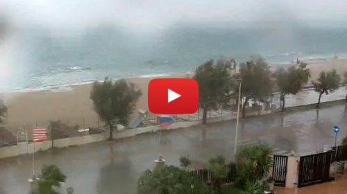 Cella temporalesca su Palermo: tempesta di vento e pioggia in corso a Isola… Ecco le immagini in diretta 🎥