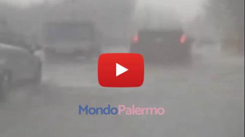 Palermo, violento nubifragio si abbatte in Viale Michelangelo: ecco le immagini 🎥 VIDEO