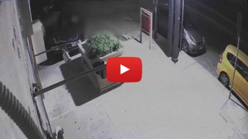Le immagini della violenta aggressione all'imprenditore del Borgo Vecchio 🎥 VIDEO
