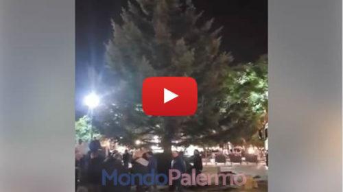 Palermo, arrivato il grande albero di Natale alto 15 metri in Piazza Politeama 🌲 VIDEO 🎥
