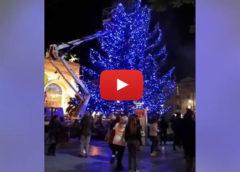 Palermo, si accende il grande albero del Politeama 🎄 VIDEO 🎥
