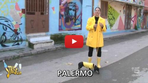Striscia, a Palermo una storia che parla del riscatto di un intero quartiere 📺 VIDEO