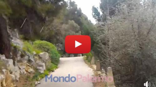 Palermo, primi fiocchetti di neve questo pomeriggio a Monte Pellegrino ❄ IL VIDEO 🎥