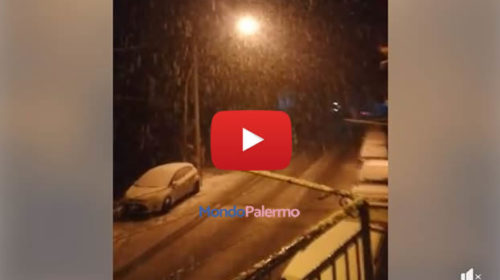 Situazione LIVE: Nevica a Pioppo frazione di Monreale (PA) ❄ VIDEO 🎥