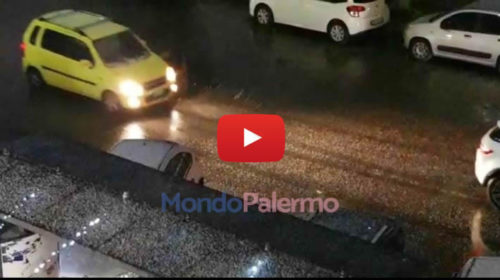 La neve è arrivata anche su Palermo, le immagini dalla zona Fiera ❄ VIDEO 🎥