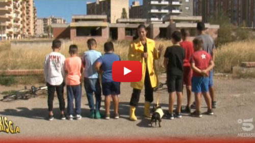 Striscia, una buona notizia da Palermo per i bambini dello Sperone 📺 VIDEO 🎥