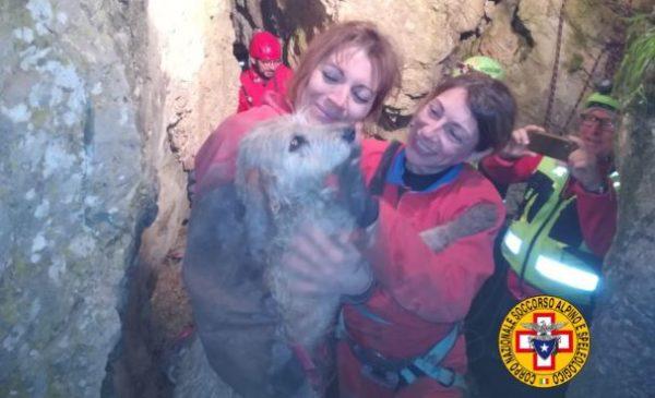 Palermo, cagnetta intrappolata in una grotta salvata dal soccorso alpino – LE IMMAGINI