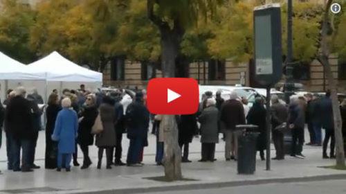 Primarie del PD, lunghe code ai gazebo a Palermo: le immagini da piazza Castelnuovo 🎥 VIDEO