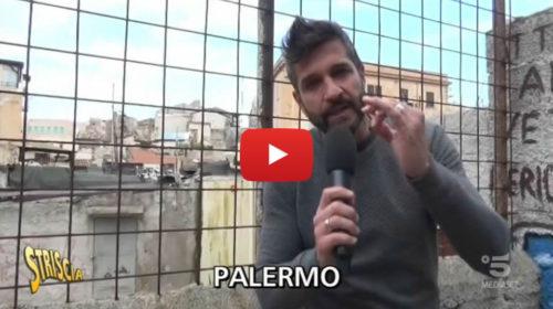Edoardo Stoppa a Palermo per una palazzina pericolante affollata di cani 📺 VIDEO 🎥