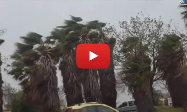 Palermo, tempesta di pasquetta: danni ovunque e motociclisti costretti a fermarsi per le forti raffiche |VIDEO 🎥