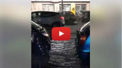 Allagamenti a Palermo, strade come fiumi: le immagini da Corso Calatafimi 🎥 VIDEO