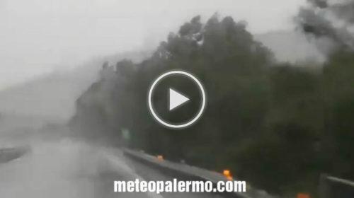 Situazione LIVE autostrada A29 direzione Palermo: temporale con forti raffiche di vento | IL VIDEO 🎥