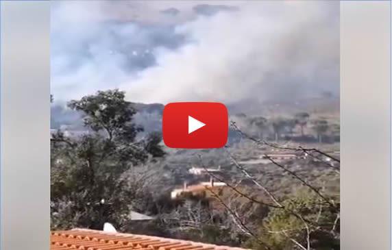 Vasto incendio nei pressi di Palermo: le immagini da San Martino Delle Scale 📹 VIDEO