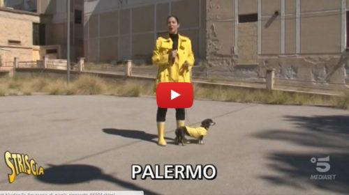 Palermo, un ospedale di sette piani incompiuto è uno spreco davvero imperdonabile 📹 VIDEO