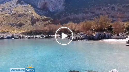 Palermo, la riserva naturale di Capo Gallo in quarantena: padroneggiano il silenzio e la natura 🏝️ VIDEO 📹