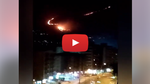Palermo, +35°C alle ore 22:00, incendi distruggono Monte Cuccio da 48h: è un disastro   VIDEO 📹