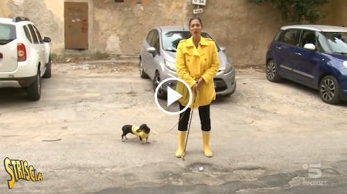 Giro d'Italia, la figuraccia delle buche a Palermo: a Striscia la Notizia i retroscena della vicenda – VIDEO
