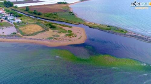 """""""Versare l'olio in mare è un reato ambientale, servono più sanzioni"""", la denuncia di MareAmico (FOTO e VIDEO)"""