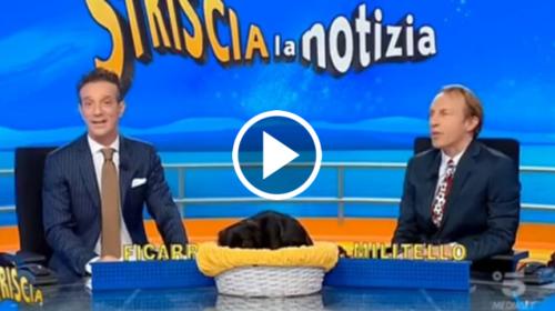 """Striscia La Notizia dedica un servizio ai disservizi Eleven Sports. Ficarra ironizza: """"Il Palermo è stato ingiustamente retrocesso"""" (VIDEO)"""