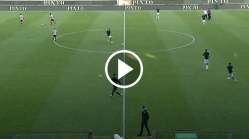 Palermo-Potenza, alle 15 in campo: ecco dove seguirla in chiaro – VIDEO