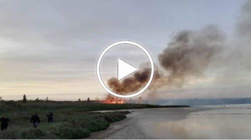 Incendio nella riserva di Vendicari, scempio ambientale – VIDEO