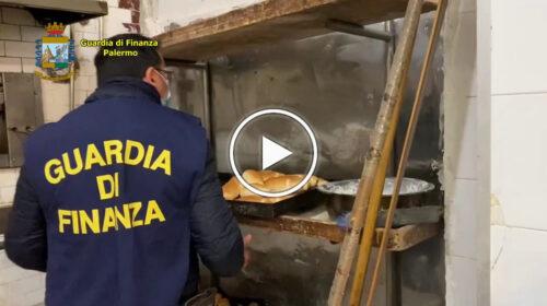 Sporcizia e blatte nel laboratorio, sequestrato panificio abusivo a Borgo Vecchio – VIDEO