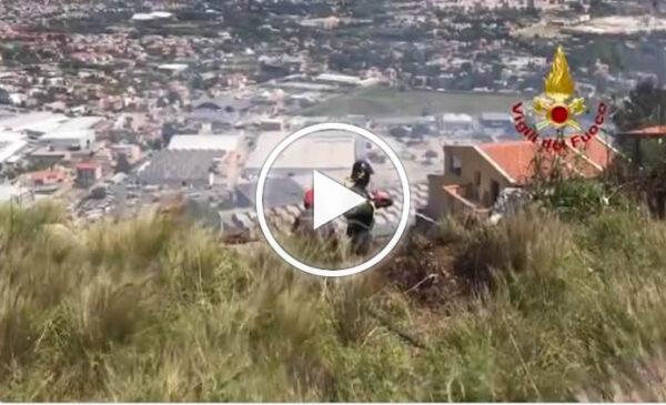 Palermo, incendio a Pizzo Sella: le immagini dell'intervento dei vigili del fuoco – VIDEO