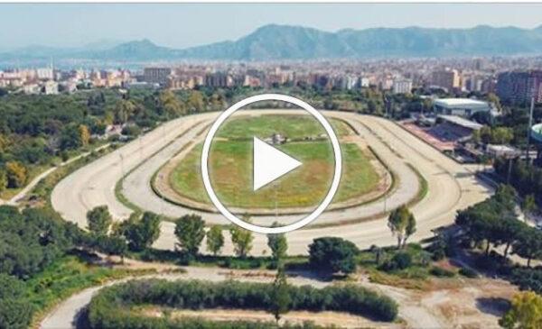 Il trotto torna a Palermo, riparte l'ippodromo con le prime corse – VIDEO