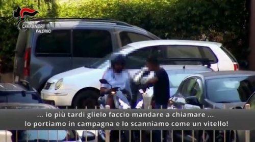 Sventato omicidio di mafia, 8 fermi nella notte, colpo alla roccaforte di Bagheria – VIDEO